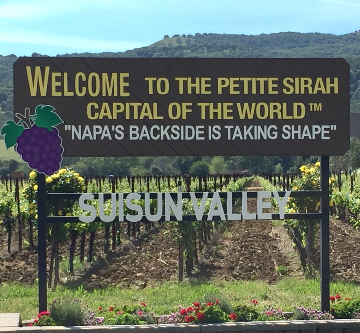 Suisun Valley World Capitol Of Petite Sirah