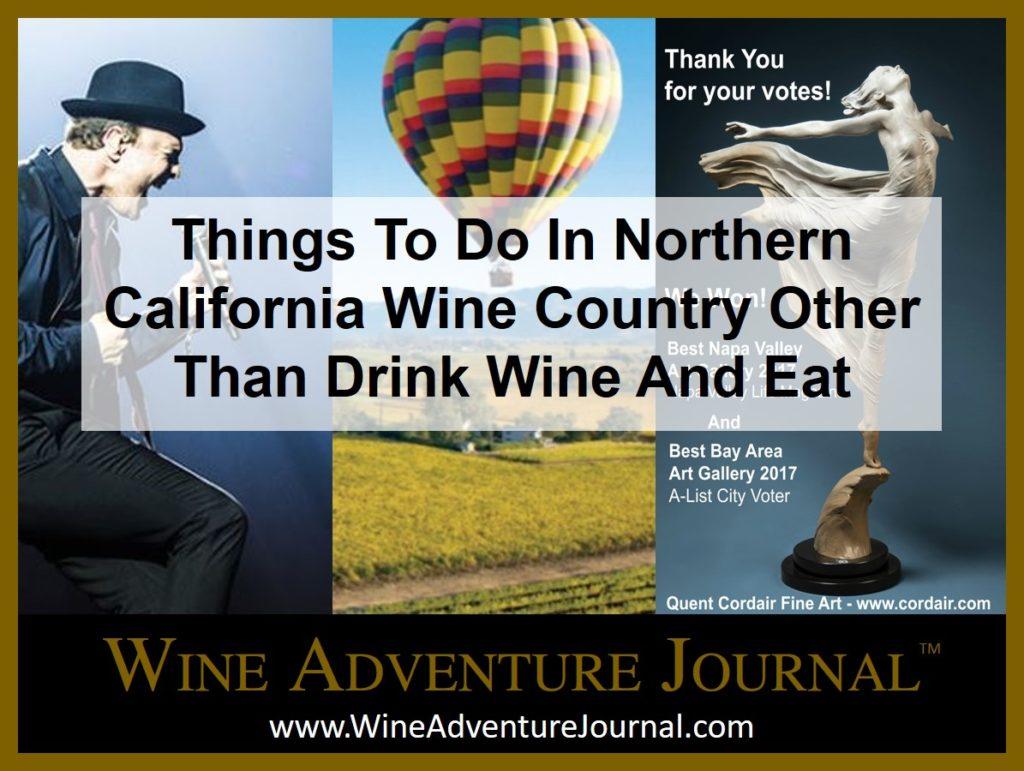 Things To Do In Northern California Wine Country Other Thank Drink Wine And Eat Wine Adventure Journal