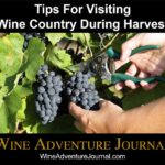 Tips For Visiting Wine Country During Harvest