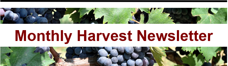 Monthly Harvest Newsletter Wine Adventure Journal2