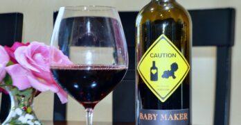 Vezer Family Vineyard Baby Maker Red Wine Blend featured