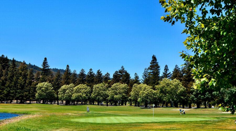 Vintners Golf Club 9th green June 2021