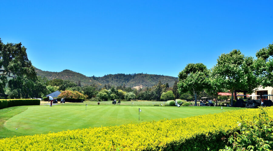 Vintners Golf Course putting green June 2021